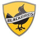 Blackbirds04 Logo