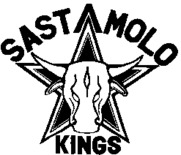 Sastamolo Kings 09-10 Logo