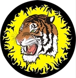 RB Tigers Logo