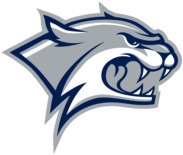 Ice-Cats Logo